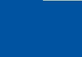 Irving Shipbuilding Inc Logo